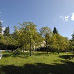 Evelin Sozzi Gestioni Immobiliari – Vendita villa e terreno a Rovetta
