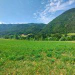 Evelin Sozzi Gestioni Immobiliari – Vendesi terreno agricolo a Cerete